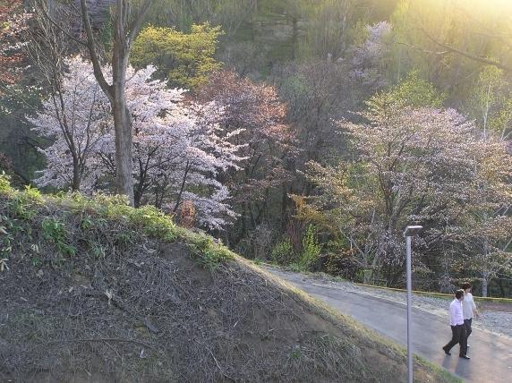 090504asahiyama07